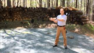 shooting a 44 magnum handgun with one finger