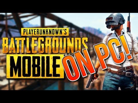 PUBG MOBILE - Full Setup on PC plus Mouse and Keyboard!