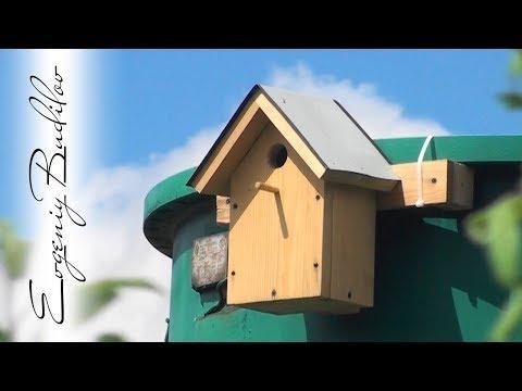Скворечник | Как сделать, что бы поселились птицы!