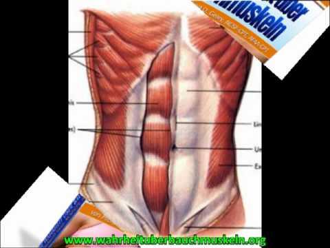 Wahrheit über Bauchmuskeln 002 - YouTube
