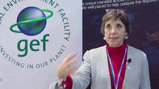 Interview with Valerie Kapos, Head of Programme, Climate Change & Biodiversity UN Environment - WCMC