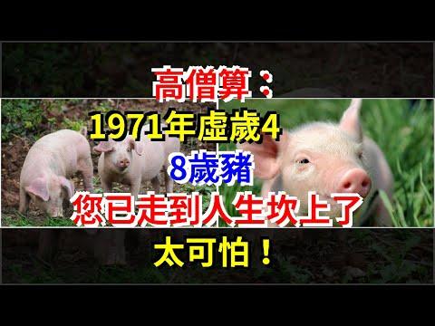 高僧算:1971年虛歲48歲豬,您已走到人生坎上了,太可怕!,[星座運勢大全]