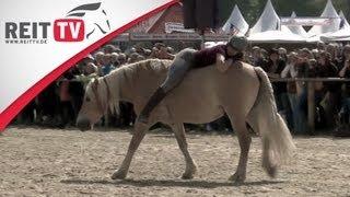 Wie sehr vertraut Dir Dein Pferd? - Harmonisches Reiten auf der Equitana 2012