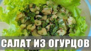 Салат из огурцов и сыра сулугуни. Весенний салат из свежих огурцов. Салат из сулугуни