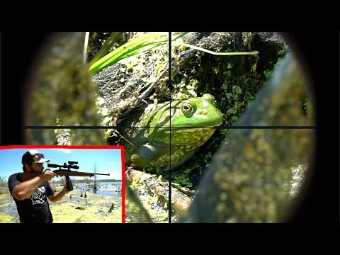 Epic SCOPE CAM Bullfrog Hunting!!! (Catch Clean Cook)
