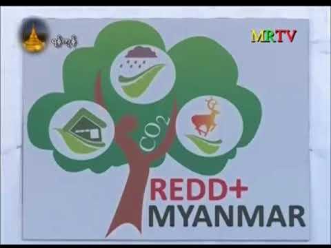 Yangon SN Workshop news on MRTV