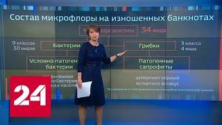 Коронавирус в кошельке: в Китае опять дезинфицируют деньги - Россия 24