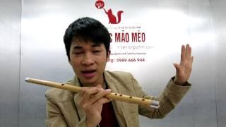 học thổi sáo bài Giấc Mơ Trưa