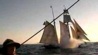 Dana Point Sea Battle v.17