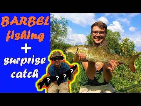 BARBEL FISHING| Great Day Exploring 2 YORKSHIRE Rivers