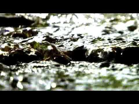 The origins of Gerolsteiner Sparkling Mineral Water