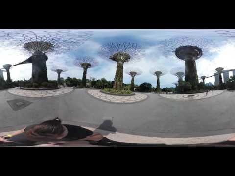 Supertree Garden In Singapore