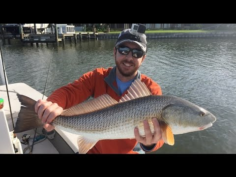 How To Catch Redfish In The Winter After A Cold Front