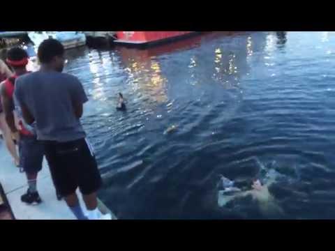 Chicago kids jumping into Baltimore inner harbor