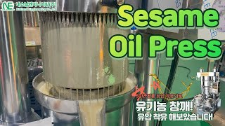Sesame oil Extraction