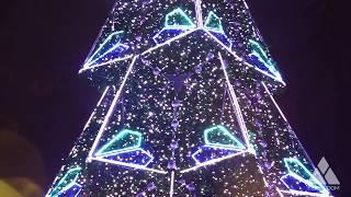 Ель Полигональная. Ёлкин Дом | Christmas Tree Рolygonal. Elkin Dom