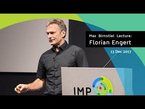 Florian Engert | Max Birnstiel Lecture