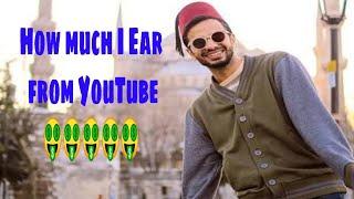 Ir Irfan junejo earning from YouTube got revealed