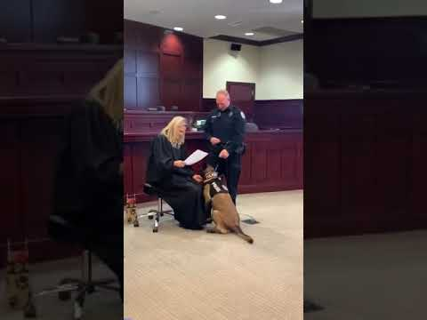 Jay & Amy - Officer JC Gets Sworn In To Join The Shelbyville Police Dept!