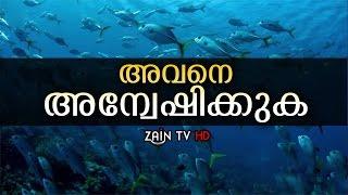 ദൈവത്തെ അന്വേഷിക്കുക -Mind blowing Malayalam video | Zain TV HD