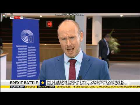 Daniel Hannan interviewed about Theresa May's terrible Brexit deal | Sky News