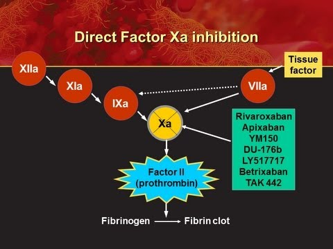 Oral Anticoagulant - PowerPoint Presentation