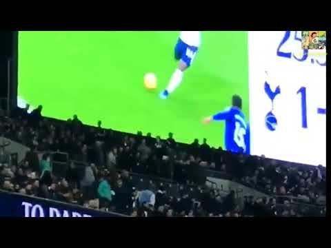 Son's Goal View from Stand -Tottenham vs Everton   4- 0  13/14january 2018
