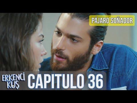 Pájaro Soñador - Capitulo 36 (Audio Español) | Erkenci Kuş