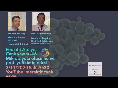 Mikrobiyota oluşumu ve probiyotikler