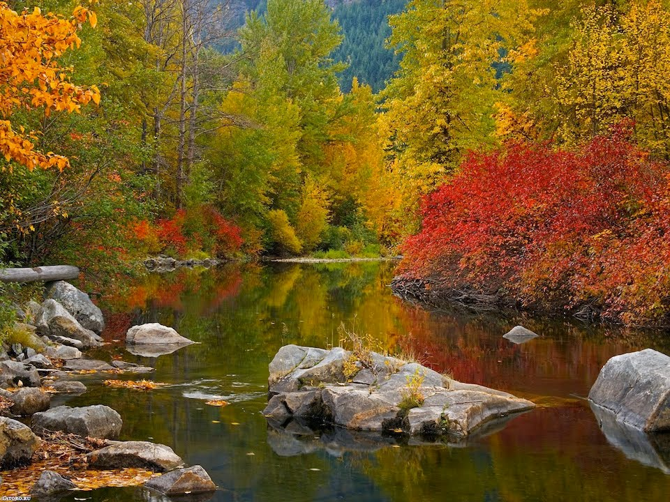 очень красивые картинки осень