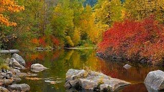 Самые красивые картинки осени. Очарование осени в самых красивых картинках
