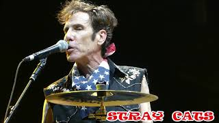 STRAY  CATS - Bring It Back Again - 40th  ANNIVERSARY  TOUR -