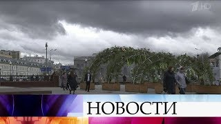Жителей столичного региона предупредили о сильном ветре и проливном дожде.