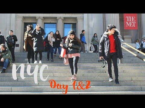 Vlog NYC Day 1&2  Nos perdemos Times Square the MET