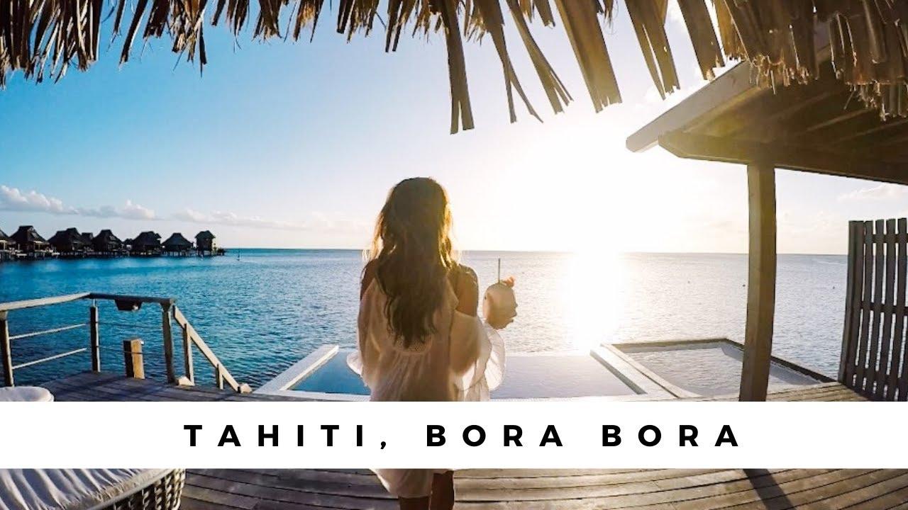 Swimming With Sharks Whales Tahiti Paradise Vlog Bora Bora Moorea