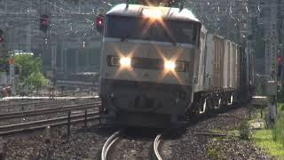 貨物列車 4071レ EF510-509 2018/08/02 山崎駅