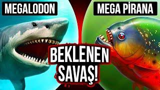 Megalodon ile Mega Pirana Karşı Karşıya Gelseydi