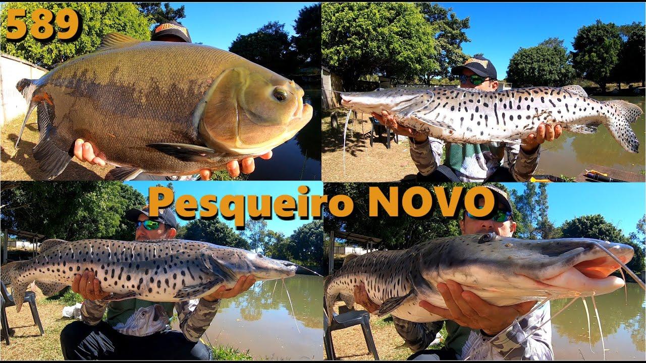 San Lorenzo - Mais um pesqueiro que  o Fishingtur descobriu - Programa 589