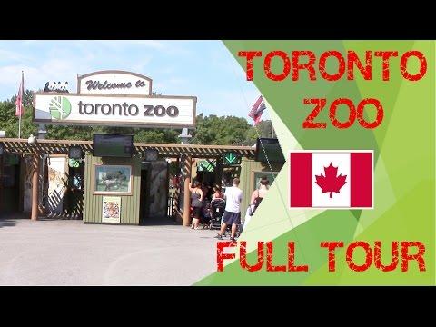 🇨🇦 Toronto ZOO Full Tour 🦁🐵🐪🐬