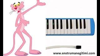 Melodika Eğitimi - Pembe Panter Melodika Resimi