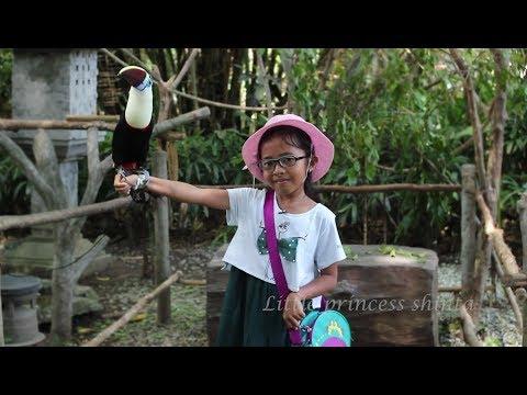 Jalan Jalan ke Kebun Binatang Bali Safari- Bali Zoo- Kids at the Zoo Learn Animals Names
