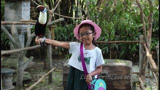 Jalan Jalan ke Kebun Binatang Bali Safari- Bali Zoo- Kids at...