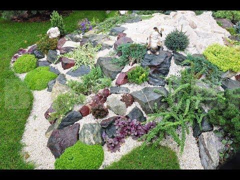 75 шедевральных идей оформления клумб цветами и камнями