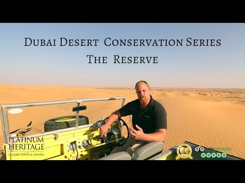 Dubai Desert Conservation Series – Desert Safari in the Dubai Desert Conservation Reserve