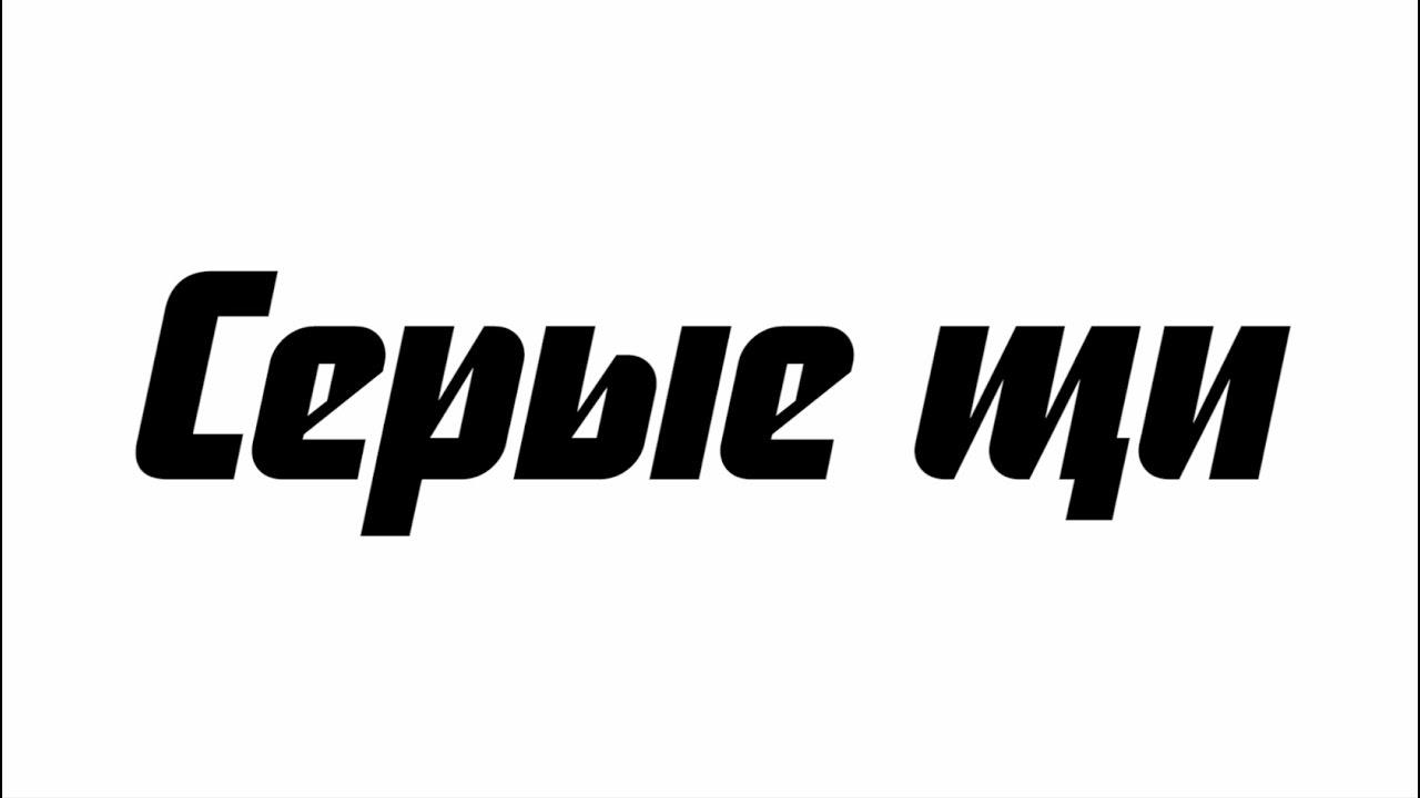 Серые щи. Новгородская экспедиция