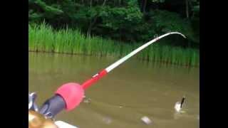 トップウォーター動画 10 07 25 どかん バス釣り bassfishing topwater