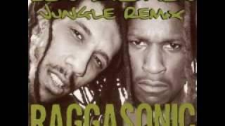 RAGGASONIC Les Riches (Original Jungle Remix)