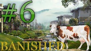 #6 Banished - Oh la vache... Ou pas.