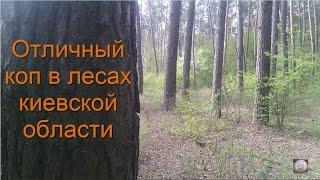 Отличный коп в лесах киевской области.Коп с металоискателем терминатор м от Фортуны