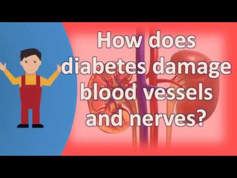 How does diabetes damage blood vessels and nerves ?